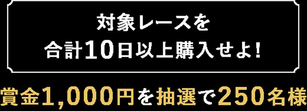 【対象レースを合計10日以上購入せよ!】賞金1,000円を抽選で250名様