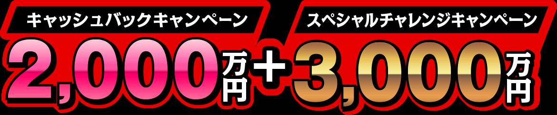 キャッシュバックキャンペーン2,000万円+スペシャルチャレンジキャンペーン3,000万円